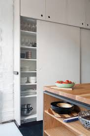 Modern Kitchen Pantry Cabinet 25 Best Ideas About Modern Pantry Cabinets On Pinterest Modern