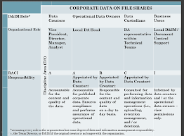 Data Governance Raci Chart A Simple Raci Chart For File Share Clean Up