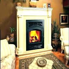 gas fireplace reviews best gas fireplace inserts brands reviews consumer reports unique insert go tub gas gas fireplace reviews