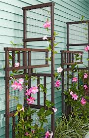 Small Picture 80 best trellis images on Pinterest Landscaping Gardens and