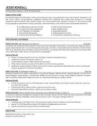 Resume Templates For Word 2013 Custom Resume Template Word 48 For Free Doc Curriculum Vitae Download