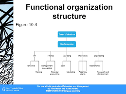 Organization Structure Ppt Video Online Download