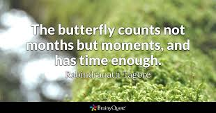 Butterfly Quotes Best The Butterfly Counts Not Months But Moments And Has Time Enough