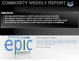 Weekly Commodity Report 01 July 2013