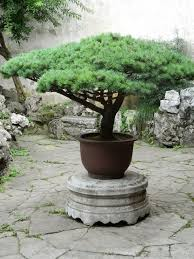 Small Picture 26 best Chinese Gardens Around the World images on Pinterest