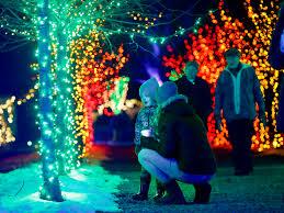 Boston Christmas Lights Tour Boston Christmas Lights And Decorations 7 Festive Options