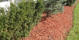 garden mulch. Delighful Garden Dyed Mulch Garden Design Calimesa CA To