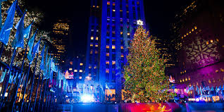 how much money does the guy who grew the rockefeller center tree how much money does the guy who grew the rockefeller center tree get paid