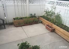 diy cedar raised beds for your patio