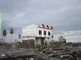 essay on tsunami boxing day tsunami how the earthquake became  essay on tsunami < term paper help essay on tsunami 2004