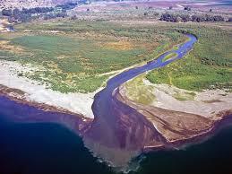 """Résultat de recherche d'images pour """"river sea"""""""