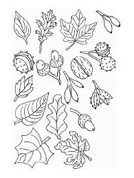 Small Picture Trees And Leaves Coloring Pages Coloring Home