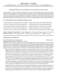 Examples Of Summary In Resume Customer Service Professional Summary ...