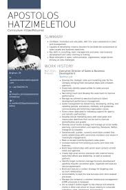 Resume Templates For Executives Gorgeous 28 Best Sample Executive Resume Templates WiseStep