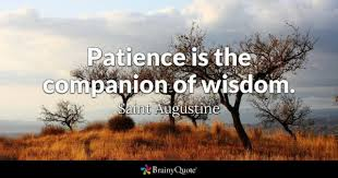Endurance Quotes 81 Wonderful Patience Quotes BrainyQuote