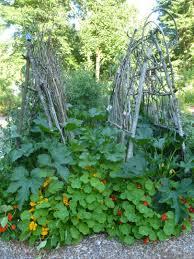 diy garden trellis ideas pdf