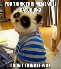 Pessimistic Panda Cat memes | quickmeme via Relatably.com
