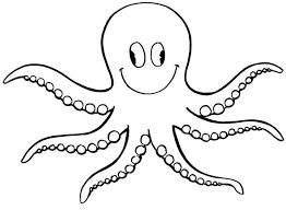 Afbeeldingsresultaat Voor Octopus Kleurplaat Taller Octopus