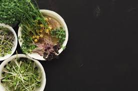difees tipos de micro verdes