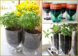 Creative recycled planters 4