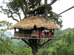 simple tree house pictures.  Tree Tree House Designs Simple Between Two  Trees To Simple Tree House Pictures E