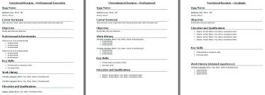Resume-Format-Best-106Best Cv Format For It Professionals Resume ...