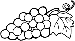 grapes clipart black and white. click to see printable version of grape 15 coloring page grapes clipart black and white
