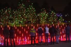 Trail Of Lights Colorado Parade Of Lights Zoo Lights Denver Christmas Lights