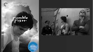 criterion in tampopo rumble fish wim wenders and  rumble fish