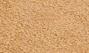tan carpet floor. Background Karpet 1 Tan Carpet Floor
