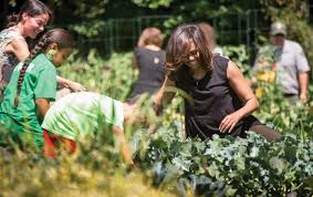 Michelle Obama Kitchen Garden The Mysterious Magnetism Of Michelle Obama The Nation