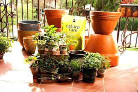 balcony herb garden ideas herb garden spacing small balcony plant ideas what to grow in a