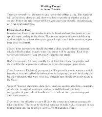 Body Essay Example Baxrayder