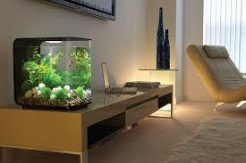 fish tank lighting ideas. BiOrb Flow Aquarium, 30 Litre, White, LED Light: Amazon.co.uk: Pet Supplies Fish Tank Lighting Ideas