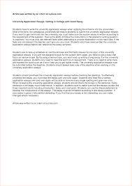 Sample College Admission Essays Example