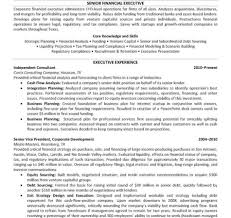 Great Hbs Resume Format Template Images Documentation Template