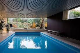 Public Swimming Pool Design Small Blue Angular Indoor Swimming Pool With Profuse Houseplants