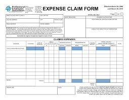 Expenses Claim Template Expenses Claim Template Complete Guide Example 1