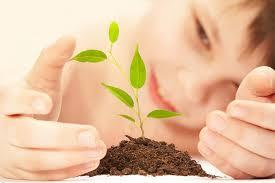 Смысл жизни Жизнь бесценный дар com Мы выбираем жизнь  В чём смысл жизни