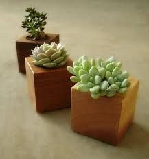 diy modern planter stunning doors indoor t decoration ideas planters ceramic pottery succulent
