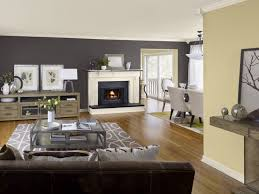 paint colors that go with brown furnitureawesome interior paint color ideas living room and lovely wood