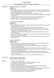 Tableau Resume Big Data Architect Resume Samples Velvet Jobs 58
