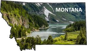 Bitterroot River Montana Hatch Chart
