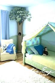 canopy for boy bed