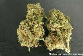 medicalmarijuanastrains.com kush