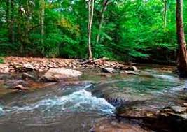 Summers County, WV Land for Sale - 54 Listings | Land and Farm
