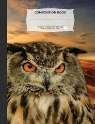 Wise Owl Sunset Composition Notebook 4x4 Quad Rule Graph Paper 100