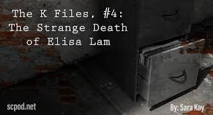 Suddenly, she is filmed leering forward. The K Files Entry 4 The Strange Death Of Elisa Lam