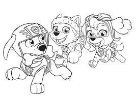 Disegno Di Cuccioli Dei Paw Patrol Da Stampare E Colorare Gratis