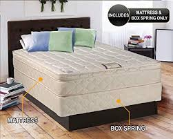 Amazon.com: Tomorrow's Dream Inner Spring Eurotop (Pillow Top) Queen ...
